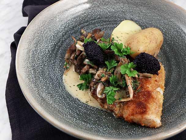 Brödstekt torsk med gräddkokt ostronskivling