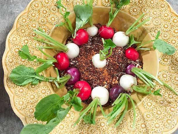 Färska rädisor med dip och rostad quinoa