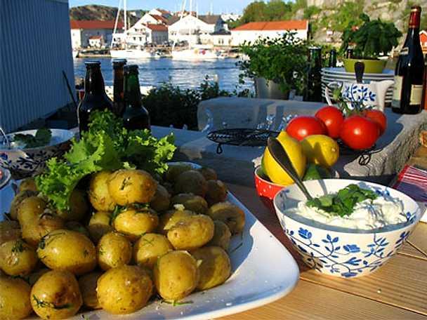 Färskpotatis och äppelselleritzatziki