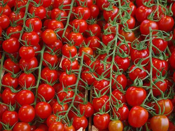 Felix tomater 2