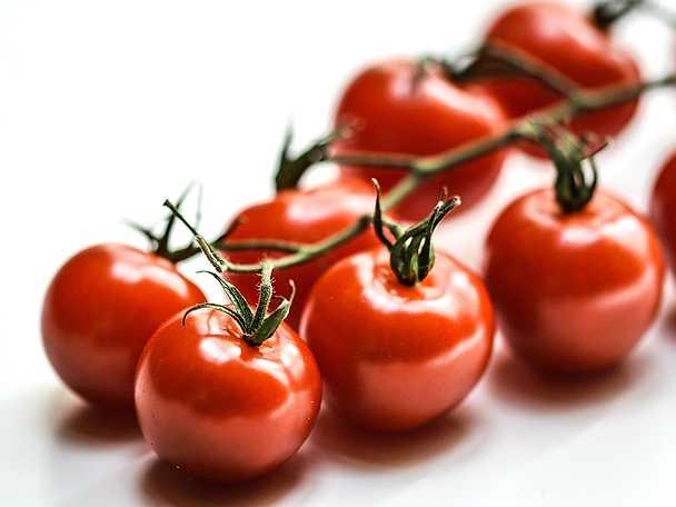 Felix tomater1