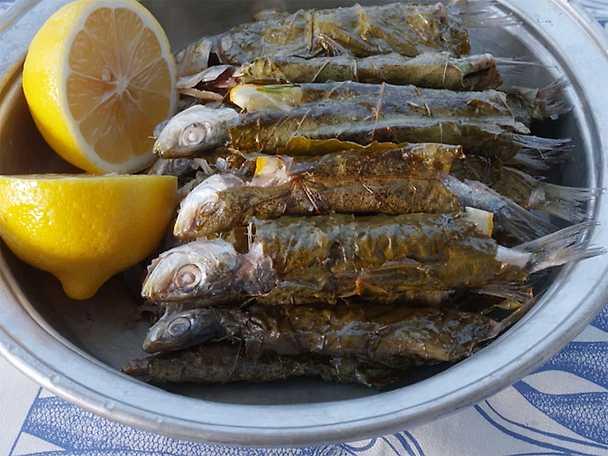 Grillade sardiner i vinblad