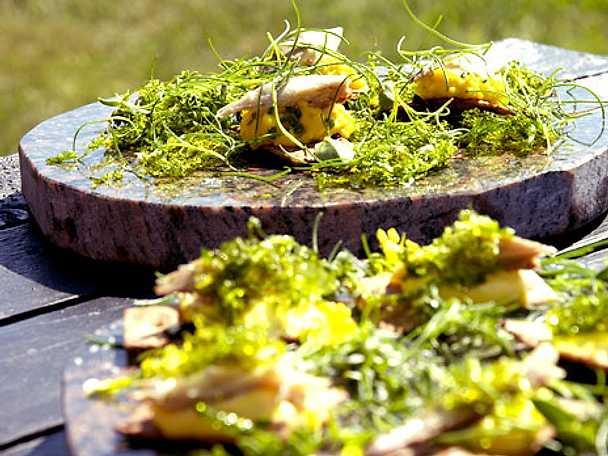 Havsknäcke med äggkräm, friterad havssallad och rökt makrill