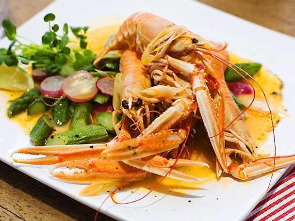Havskräftor med sallad på sparris, rädisor och krasse