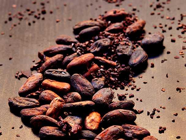Historien om kakaon