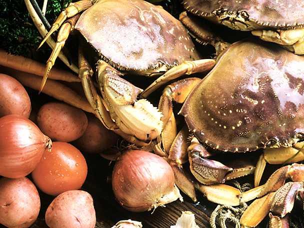 Kokt krabba