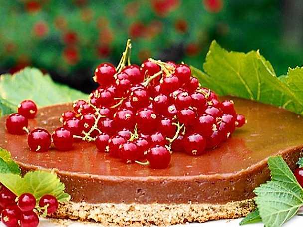 Kolapaj med röda vinbär