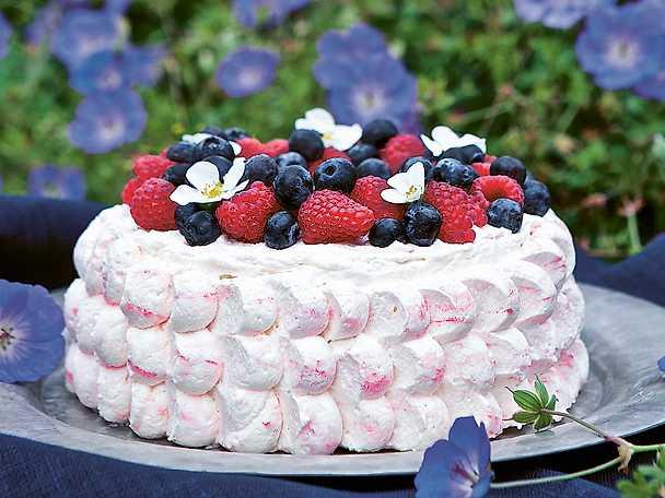 Lilla Ungens goaste sommartårta