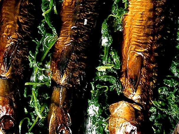 Makrill på grön bädd