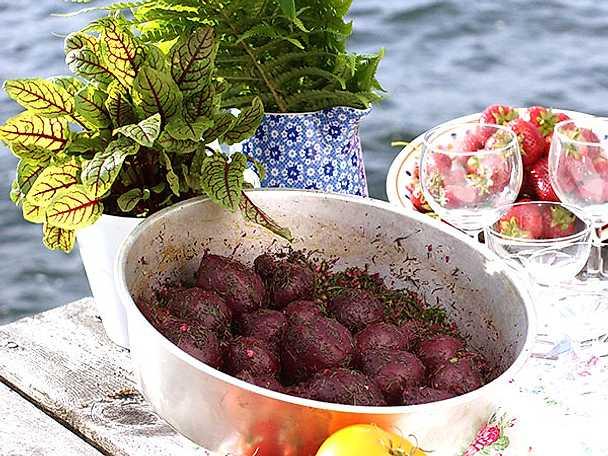 Marinerade rödbetor med sumak och dill