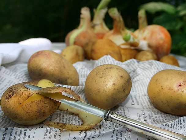 Matavfall potatisskal