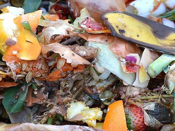 Matsvinn kompost