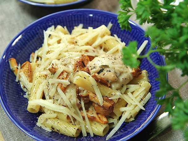 kyckling trattkantareller pasta