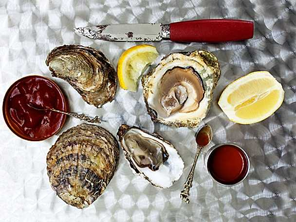 Ostron och ostronprovning