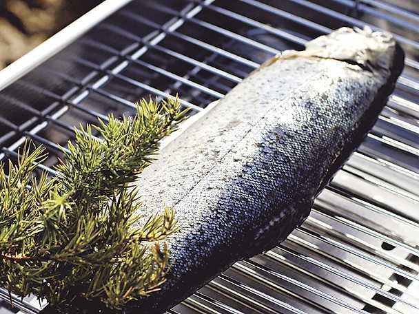 Röka fisk
