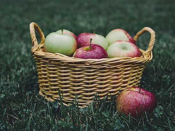 Så lyckas du med äppelmos2