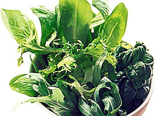 Sallad på gröna blad