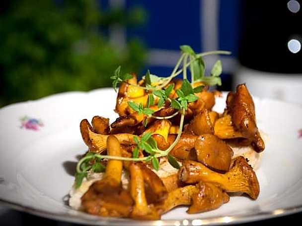 Smörstekta kantareller på toast med curry