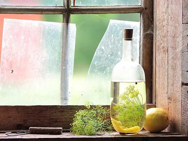 Snaps med citron och dill