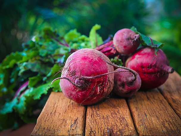 Temasida klimatsmart mat rödbeta