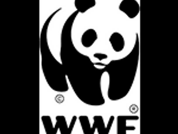 WWF logga